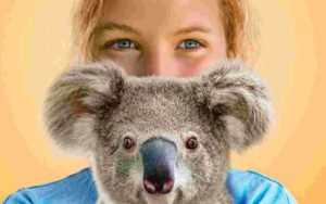 izzy's koala world season 2